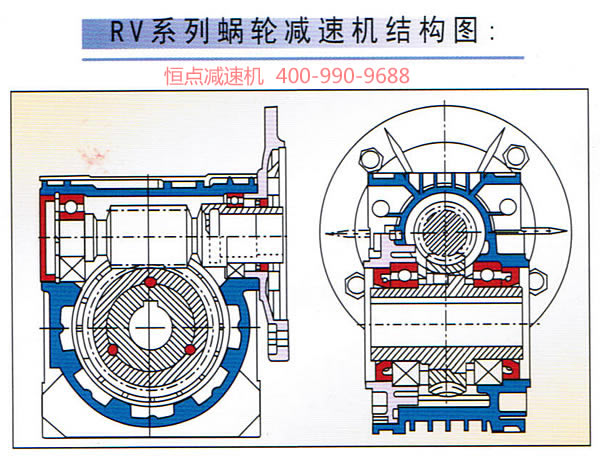 rv系列蜗轮蜗杆减速机内部结构彩图